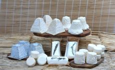 Loire Goat Cheese Selection
